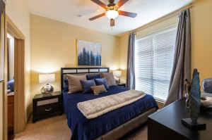 Two Bedroom Apartments for Rent in Houston, TX - Model Bedroom